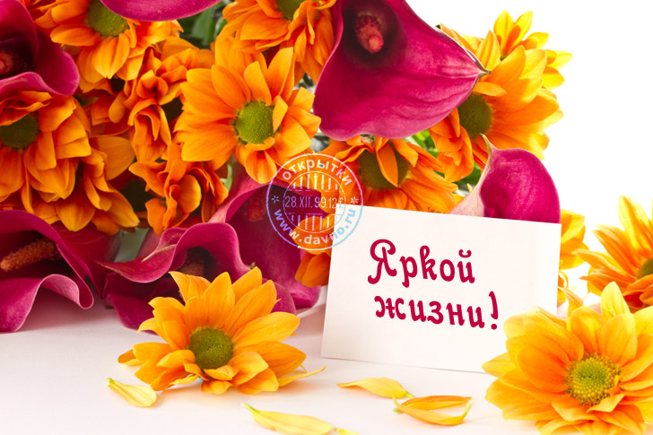 http://www.davno.ru/assets/images/cards/big/birthday-217.jpg